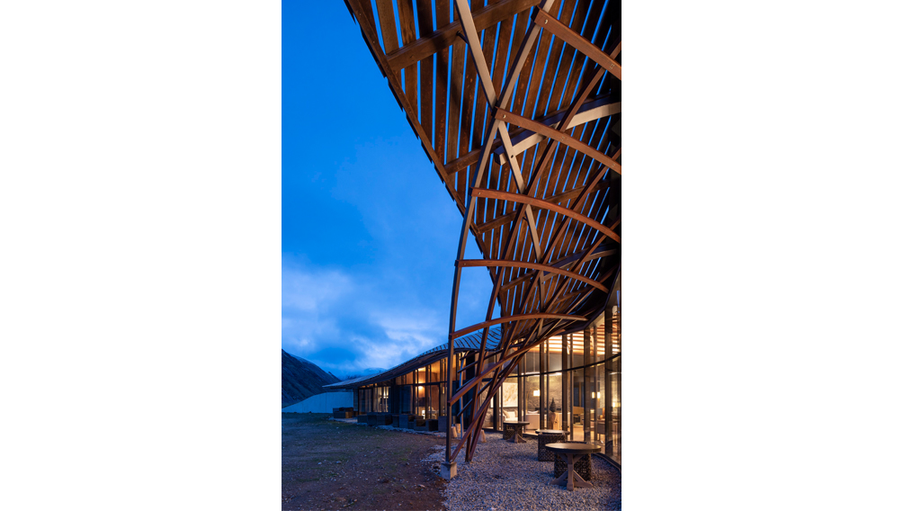 gridshell construction architecture new zealand